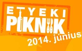 etyekipiknik-nyar-2014-2